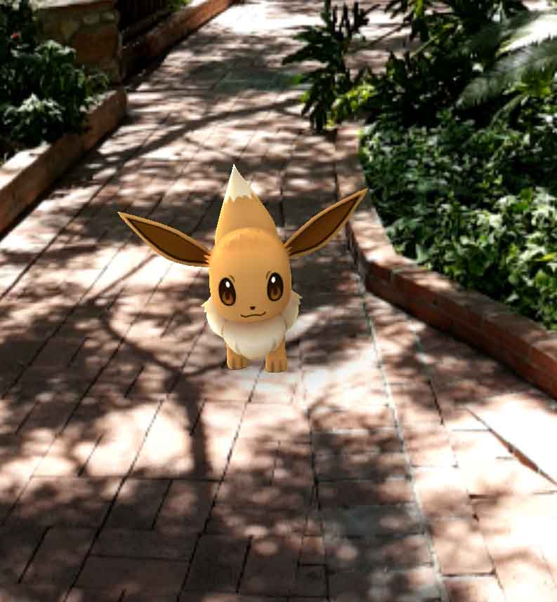 Gotta Catch 'em All in the Gardens!