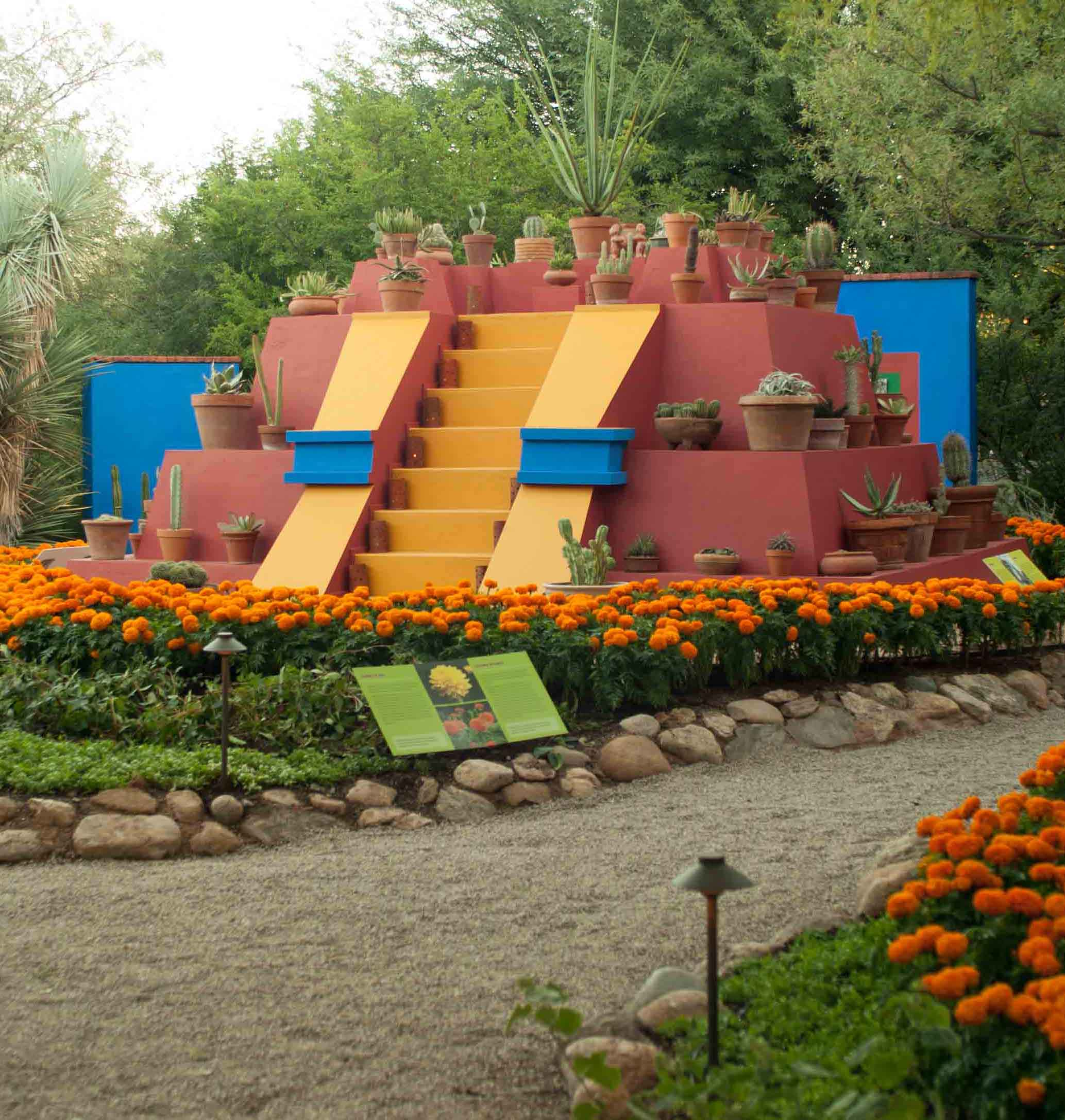 In Recent Years, Tucson Botanical Gardens Has Increased Its Commitment To  Bringing Nationally Recognized Exhibits To Tucson. Beginning In 2015 With  The ...