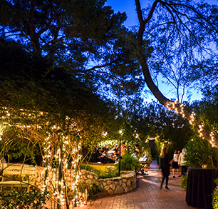 Host an event tucson botanical garden premium rental package junglespirit