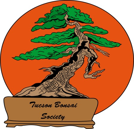 Tucson Bonsai Society Teaching Team