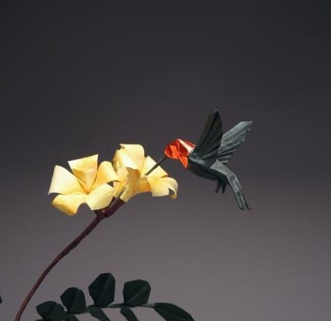 From Flapping Birds to Space Telescopes: The Modern World of Origami